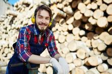Лесозаготовительные работы